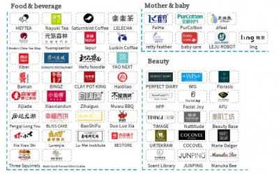 China's New Consumer Brand Report 2019 & Top 100 Brand List